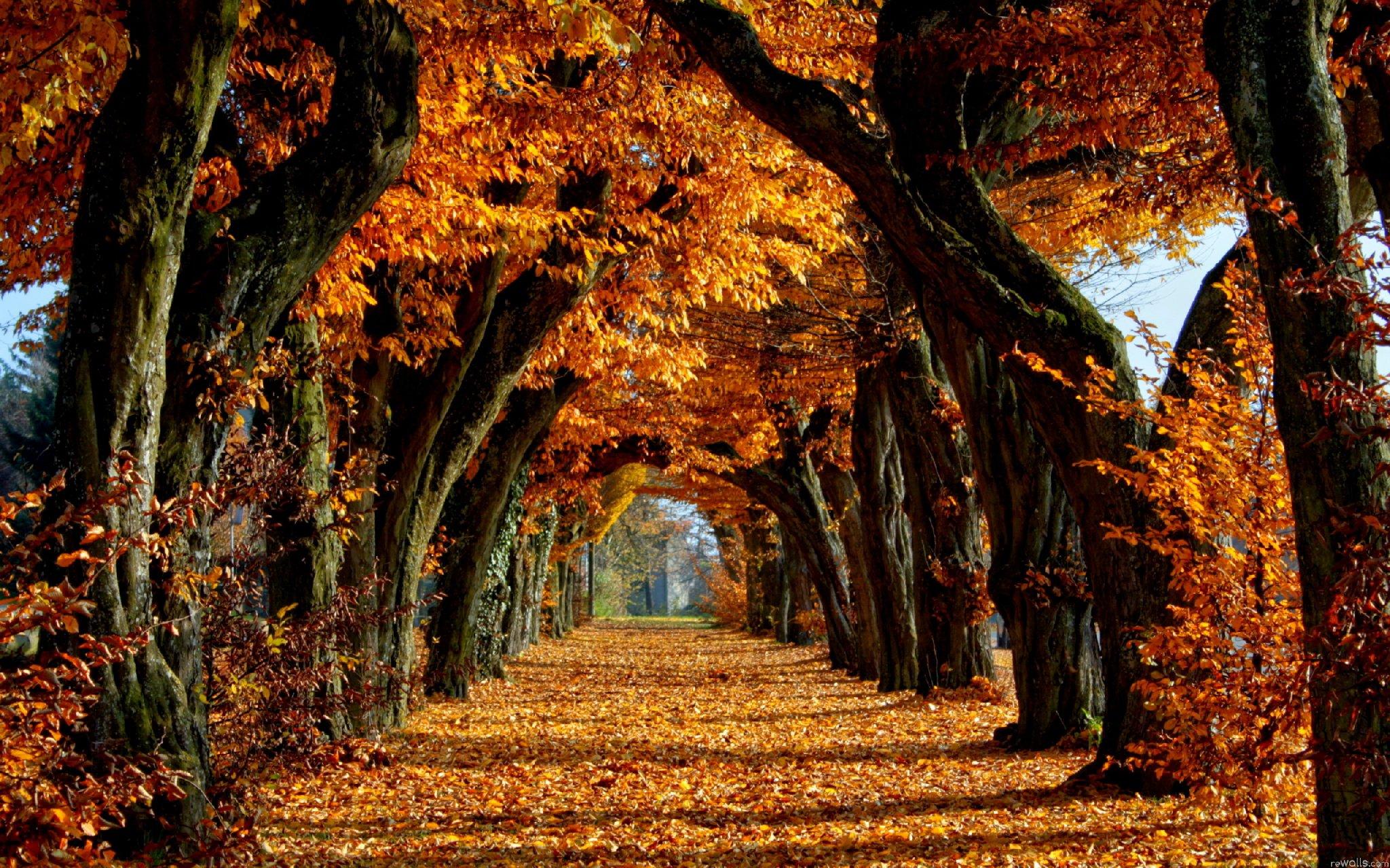 Eccezionale Foto panorami per il tuo desktop - Le più belle foto di panorami  OU35